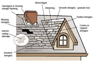 types-of-shingle-roof-damage
